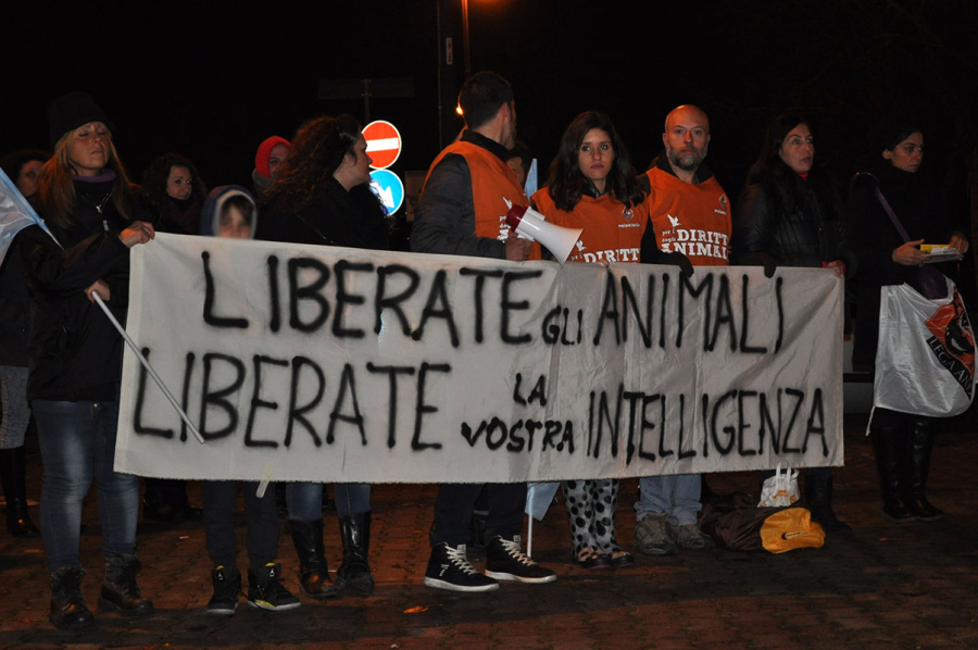Volontari LAV Napoli in piazza a Scampia - Foto e video by Crudiezine