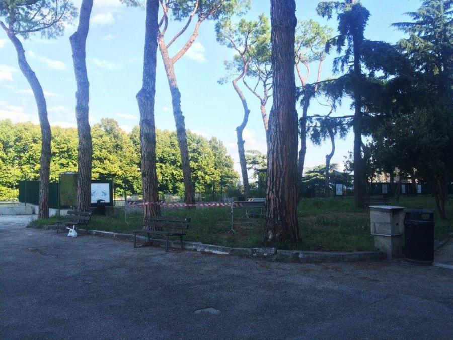 napoli parco dei quartieri spagnoli l 39 oasi verde del