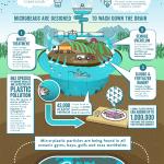 Infografica sul percorso di inquinamento delle microparticelle di plastica