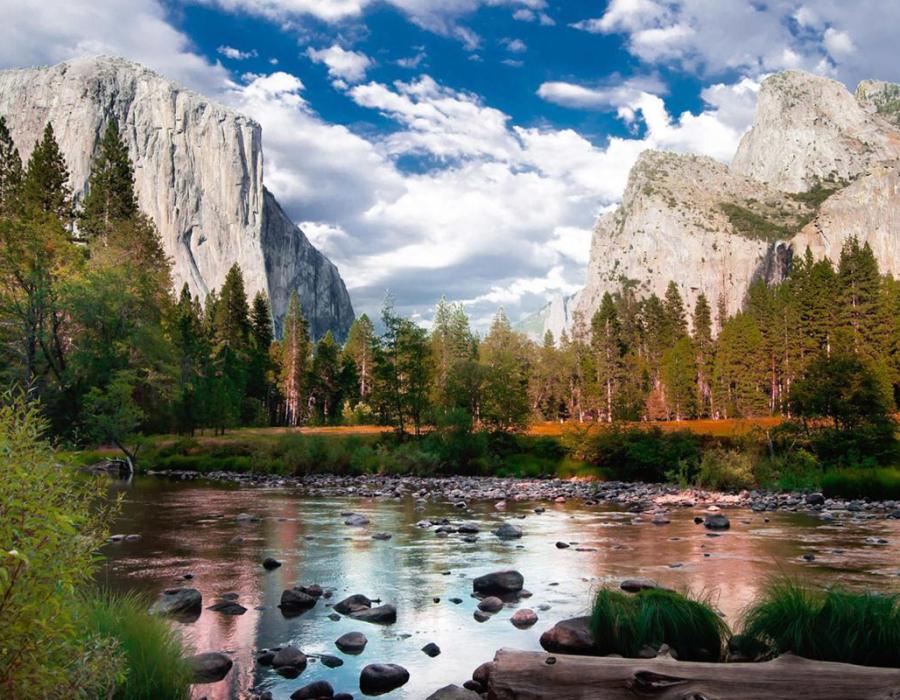 Parco Yosemite in California