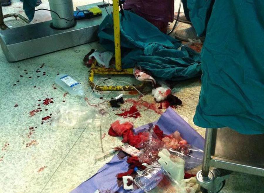 Le scarse condizioni igienico-sanitarie degli ospedali egiziani