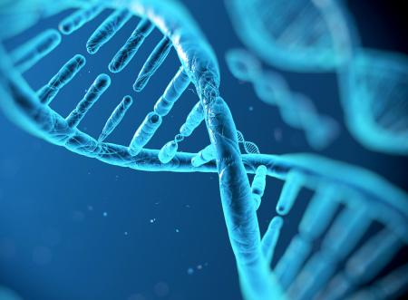 progetto genoma