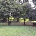Villa Comunale Tortora Brayda